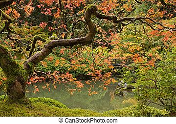 La temporada de otoño en el jardín japonés 2