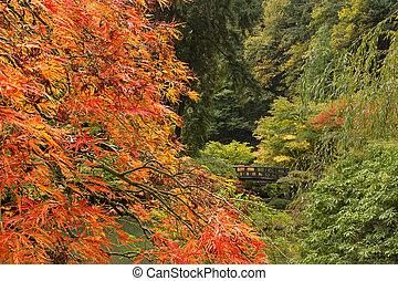 La temporada de otoño en el jardín japonés