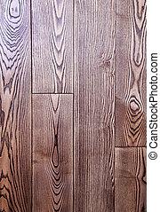 La textura de la planta de madera