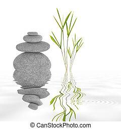 La tranquilidad del jardín Zen