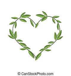 La vid verde se va en forma de corazón