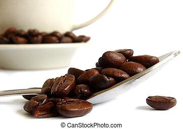 La vida del café