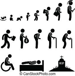 La vida humana es una estudiante de edad