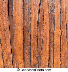 La vieja textura de madera con patrones naturales