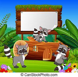 La vista del jardín natural con la tabla de madera en blanco y tres mapaches felices