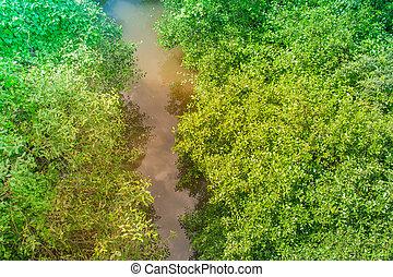 La vista superior del pequeño río junto a árboles verdes en el jardín exterior.