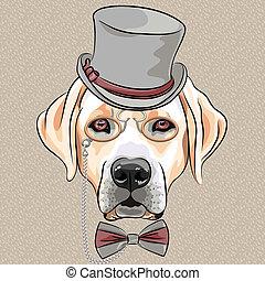 labrador, casta, perro, vector, hipster, serio, caricatura, perro cobrador