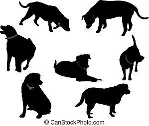 Labrador negro siluetas ..