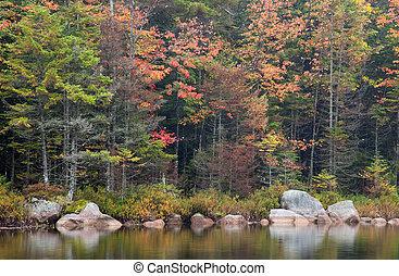 lago, autum, colores, sis, reflexión