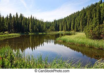 Lago de la montaña de verano