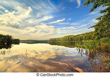Lago de madera en el día de verano