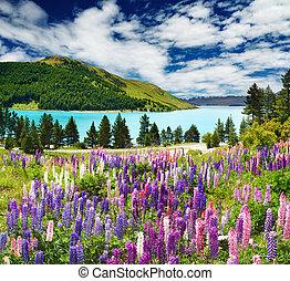 Lago Tekapo, nuevo Zealand