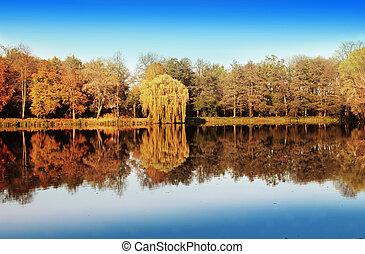 Lago y bosque en otoño