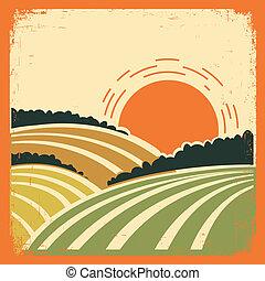 Landscape con campos en el viejo cartel