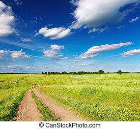 Landscape con carretera de campo