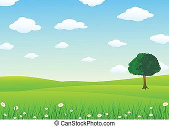 Landscape con hierba