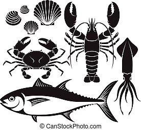 langosta, marisco, silueta, vector, cangrejo del atún, mariscos, gamba, set., squid., pez, illustrations.