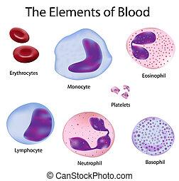 Las células de sangre
