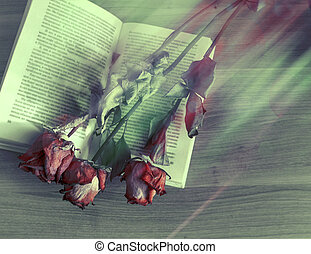 Las flores secas están en un libro