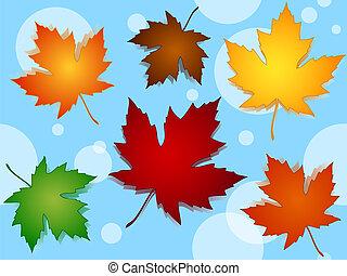 Las hojas de arce inservibles de colores caen sobre el azul