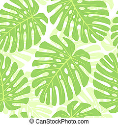 Las hojas de la planta tropical. Un vector sin sentido.