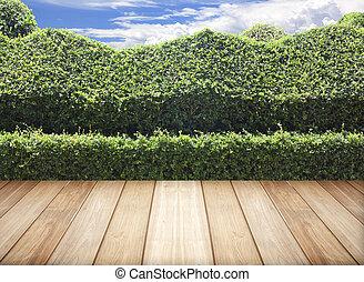 Las hojas de valla de Bush