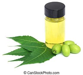 Las hojas medicinales de neem y frutas con aceite esencial