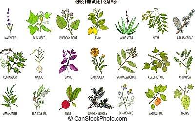 Las mejores hierbas para el tratamiento de acné