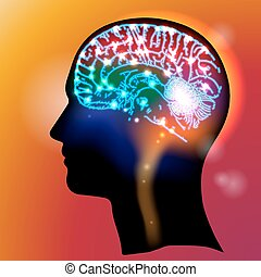 Las neuronas principales