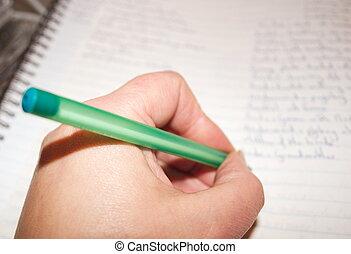 Las notas de los estudiantes
