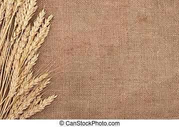Las orejas de trigo bordean el fondo de arpillera