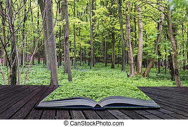 Las páginas creativas del libro, un hermoso crecimiento verde vibrante en el paisaje de los bosques primaverales