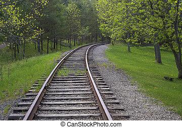 Las vías del tren en el bosque