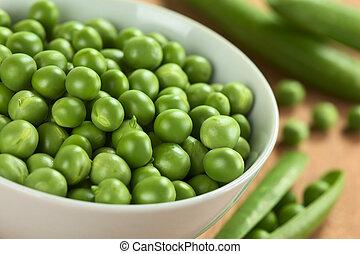 (lat., sativum), crudo, verde, fresco, guisante, pisum