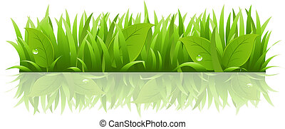 leafs, pasto o césped