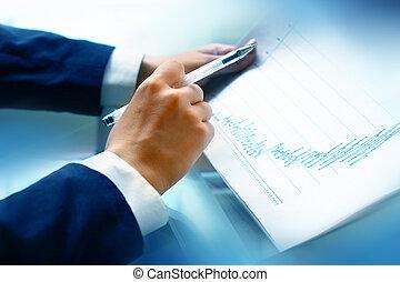 leer, informe, financiero