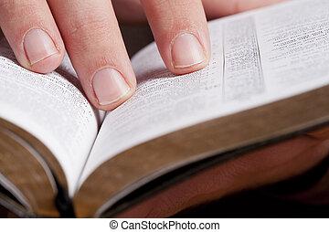 Leyendo a través de la Biblia