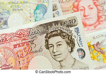 libra, notas., pounds., currency., británico, billetes de banco