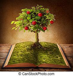 libro, conocimiento
