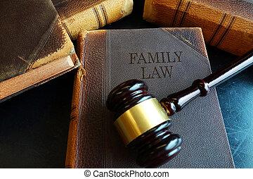 Libro de derecho familiar