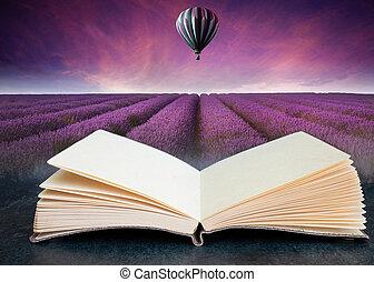 libro, verano, aire, globo, compuesto, abierto, lavanda, caliente, maravilloso, imagen, ocaso, conceptual, paisaje, campo