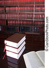 Libros legales número 19