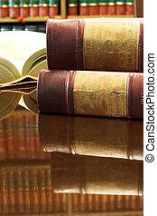 Libros legales número 27
