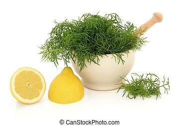 limón, hierba, eneldo