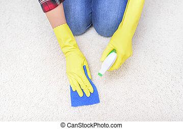 Limpiador de alfombras.