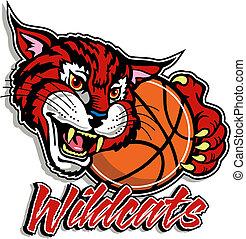lindo, baloncesto, wildcat