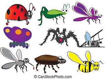 lindo, bichos, divertido, escarabajos