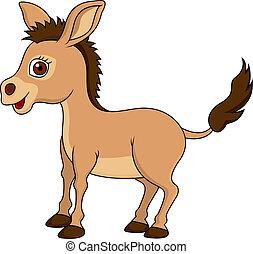 lindo, burro, caricatura