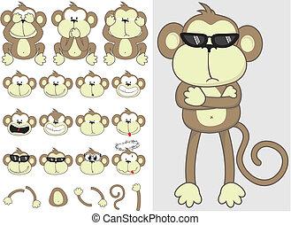 Lindo conjunto de monos