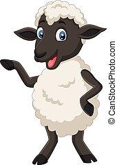 Lindo dibujo de ovejas posando aisladas en el fondo blanco